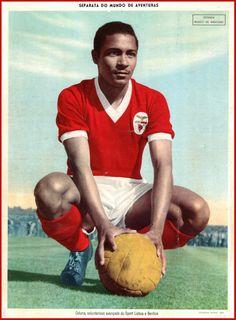Mário Coluna ... 596 jogos 136 golos 2 Taças Campeões Europeus 10 Campeonatos 7 Taças de Portugal