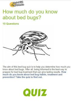 15 great how do you get bed bugs images bed bugs bed bugs rh pinterest com