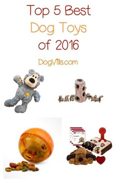 Treat Fido to one of the best dog toys of 2016 this holiday season! Check out our picks for toys your pooch will love!