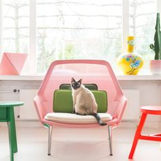 /: @zilverblauw featuring @vitra Slow Chair - #lifestyle #furniture #vitra #design #bloggers #regram #instastyle #colour #dream #pastels #interiordesign #pussycat #meow #inlove #styled #picoftheday