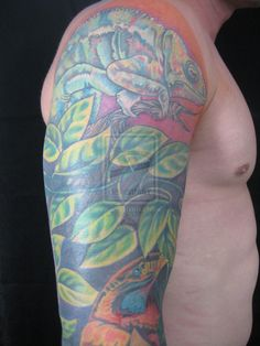 Chameleon Tattoo Drawing Chameleon tattoo cover up by