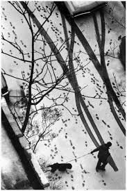 Image result for andre kertesz