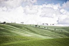 50 ODSTÍNŮ ZELENÉ A VŮNĚ SÍRY – Cestouni Some Pictures, Golf Courses, Landscapes, Travel, Paisajes, Scenery, Viajes, Trips, Traveling