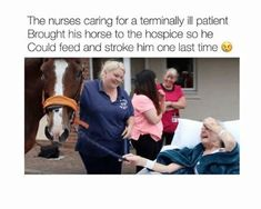 """Daily Truths Life Memes so hilarious and funny only the best real life memes that make you laughing so hard : """"The nurses caring for a terminally ill patient brought his horse to the hospice so he could feed and stroke him one last time. Sweet Stories, Cute Stories, Try Not To Cry, Funny Memes Images, Humorous Pictures, Human Kindness, Touching Stories, A Silent Voice, Wholesome Memes"""