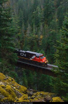 CN 2559 Canadian National Railway GE (Dash at Squamish, British Columbia, Canada by Christian Vazzaz Canadian National Railway, Canadian Pacific Railway, Locomotive, British Columbia, Escala Ho, Bonde, Railroad Photography, Train Times, Train Art