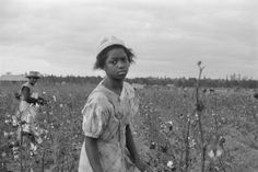 """""""A weary young girl picking cotton, mother in the background (Arkansas), My father was five years old in Arkansas at this time. I think I'll imagine this is me. UPDATE I am currently writing this story. Picking Cotton, African American Girl, American Art, African Diaspora, Black History Month, Before Us, History Facts, Black People, Black Is Beautiful"""