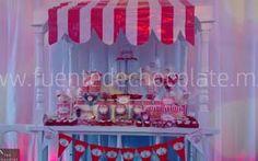 Carritos de Dulces Fuentes de chocolate Renta y Venta, Chamoy, Queso México DF | Mesa de Dulces y Cockteleria