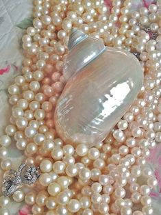 Maximize Your Beauty with Beautiful Pearl Jewelry Pearl Jewelry, Pearl Necklace, Pearl And Lace, Sea Shells, Iridescent, Swarovski, Bling, Gemstones, Silver