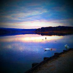 Haut Doubs | Coucher de soleil au lac Saint-Point