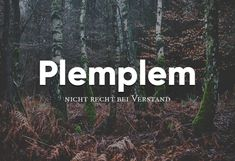 Kladderadatsch and Remmidemmi! The post 29 beautiful German words that you say far too rarely appeared first on Woman Casual - Life Quotes The Words, Words Quotes, Life Quotes, Sayings, Nicola Tesla, Letters Of Note, German Words, Pet Health, Beautiful Words