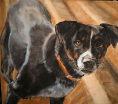 Animal/Dog Watercolor Painting by Susan Nall