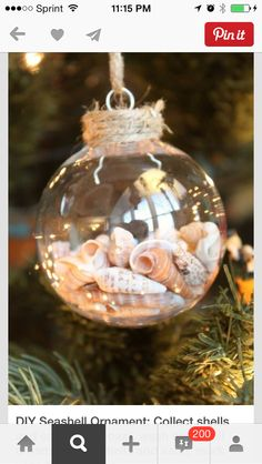 Fill clear glass ornament (large mouth) w/sand & small shells