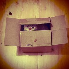 You can't see me... ;)