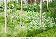 philip nixon garden - Поиск в Google