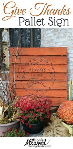 Fall Pallet with an Always Give Thanks stencil | Jennifer Allwood Home | Rustic painted pallet in orange with a fall mums and pumpkins on the porch. #falldecor #pumpkins Mums In Pumpkins, Painted Pumpkins, Fall Mums, Barn Wood Signs, Pallet Signs, Palette, Favorite Paint Colors, Pumpkin Colors, Diy Fall Wreath