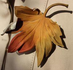 foto de Les 17 meilleures images de feuilles d'érable | Erable, Petites ...