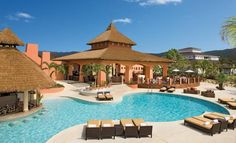 Secrets Wild Orchid Montego Bay Click to Book!