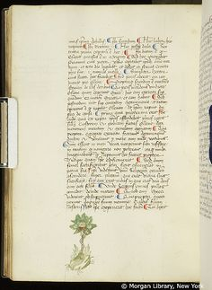 Commentary, MS M.938 fol. 116v - Images from Medieval and Renaissance Manuscripts - The Morgan Library & Museum