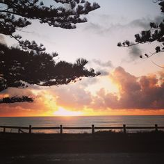 Newport Beach Sunrise, Northern Beaches Sydney, Australia Australia Beach, Sydney Australia, Beach Sunrise, Sunset, Avalon Beach, Newport Beach, Beautiful Things, Beaches, Surfing