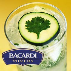 Secret Garden Cocktail: with Cucumber and Cilantro, what a great taste combination