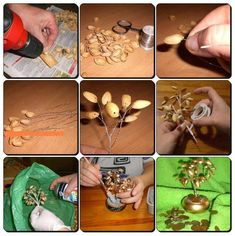 Reciclar cascaras de pistachos