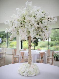 Cherry Blossom Tree, Pink Blossom, Blossom Trees, Wedding Table Centerpieces, Table Decorations, Orchid Tree, Wisteria Tree, Tree Canopy, Green Trees