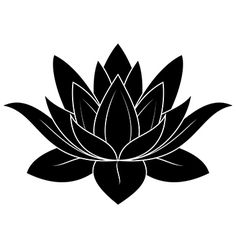 Lotus Flower on VectorStock