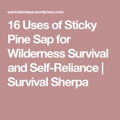 16 Uses of Sticky Pine Sap for Wilderness Survival and Self-Reliance | Survival Sherpa