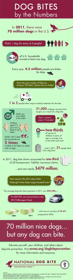Are you following these Dog Bite Prevention guidelines