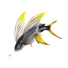 Exocoetidae on Behance Wave Boat, Sea Tattoo, Fish Drawings, Water Animals, Nature Illustration, Ocean Art, Fish Art, Illustrations And Posters, Sea Creatures