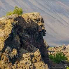 A dramatic lava rock formation in Dimmuborgir. What do you think it looks like? Let me know in the comments. Dimmu Borgir, North Iceland, Things To Do, Things To Think About, Iceland Landscape, Amazing Nature, Lava, Close Up, Picture Video