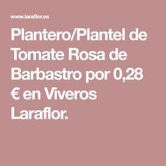 Plantero/Plantel de Tomate Rosa de Barbastro por 0,28 € en Viveros Laraflor.