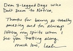 Dear 3-Legged Dogs Who Don't Seem to Notice