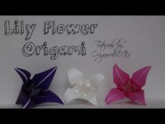How To make An Origami 5 Petals Lily Flower ( Hoa Bách Hợp) Tutorial By OrigamiPaperCraft - YouTube