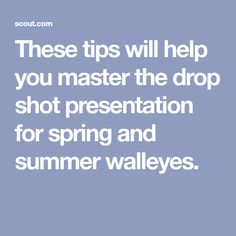 These tips will help you master the drop shot presentation for spring and summer walleyes. Bass Fishing Lures, Walleye Fishing, Fishing Tips, Fishing Stuff, Fishing Tackle, Drop Shot, Presentation, Shots, Learning