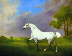 A Grey Horse Back to George Stubbs paintings