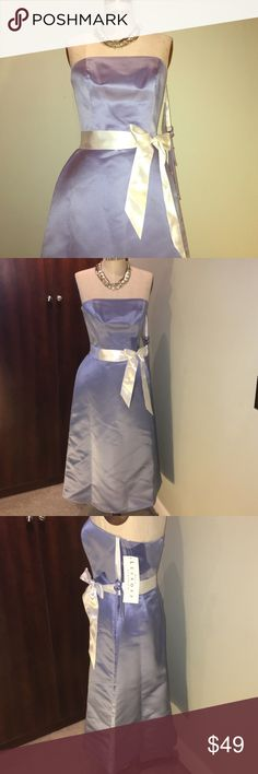 Bill Levkoff strapless bridesmaid gown Lovely NWT Bill Levkoff Classics European Sky Blue strapless dress with hidden back zipper / hook and eye closure. Dress comes with ivory colored ribbon sash and optional straps. Originally bought as a bridesmaids dress but the wedding fell through :(. This dress could also be worn to a wedding as a guest. Fully lined. Lining is 100% acetate, shell is 100% polyester. Dry Clean only. Necklace is not included. Bill Levkoff Dresses Wedding