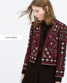 Embroidered Jacket, Zara (SS15)