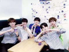 K Idol, Produce 101, Starship Entertainment, Theme Song, Kpop Boy, Nct Dream, Boy Groups, Wattpad