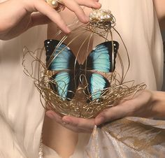 Decoratiuni pentru nunta cu fluturi vii