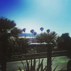 Cali lifestyle