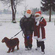 Julebukker i Bjørkedalen 😍☺🎄 - ragnfr