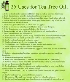 Teachings on 25 uses for Tea Tree Oil. Teachings on 25 uses for Tea Tree Oil. uses for Tea Tree Oil. on 25 uses for Tea Tree Oil. uses for Tea Tree Oil. Tea Tree Essential Oil, Doterra Essential Oils, Essential Oil Blends, Doterra Tea Tree Oil, Lemongrass Essential Oil Uses, Young Living Oils, Young Living Essential Oils, Apple Cider, Tea Tree Oil Uses