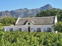Dutch Cape-style vineyard in South Africa. (TrishBoy/Photos.com)