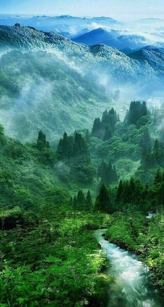 Nature Mist Mountain Wood Forest River Landscape iPhone 6 plus wallpaper All Nature, Amazing Nature, Amazing Art, Green Nature, Green Earth, Beauty Of Nature, Nature Source, Awesome, Spring Nature