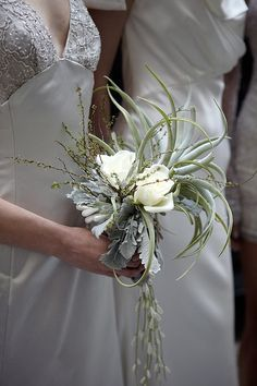 Air Plant/Rose/Lambs Ear Bouquet we can easily sub another flower for the roses. Great size for bridesmaids and different in structure as well.
