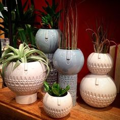 I'm #obsessed with these #adorable #facevase's by #atelierstella at #westelm #westelmjax #westelmhomestylist