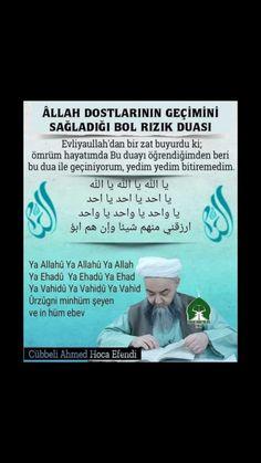 Hadith, Quran, Islamic, Ali, Ant, Holy Quran