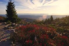 The Kancamagus Scenic Byway in New Hampshire, one of the ten best views of autumn leaf foliage in North American forests.