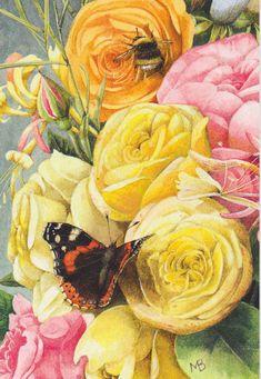 Roses MB